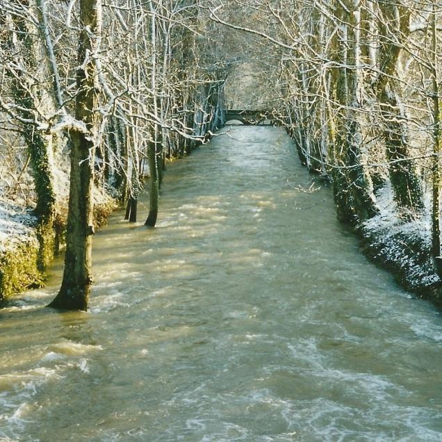 Messigny_et_Vantoux_suzon sous la neige